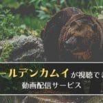 アニメ「ゴールデンカムイ」1期・2期が見られる動画配信サービスまとめ!