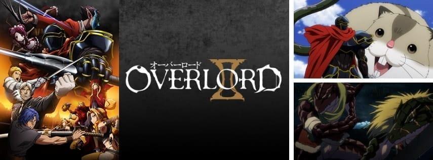dアニメストアで配信している『オーバーロード』